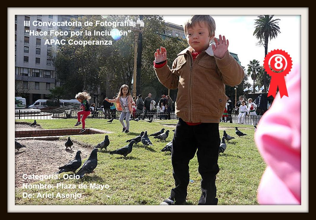 PUESTO 8:Plaza de Mayo de Ariel Asenjo